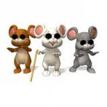 Three blind mice image from lehighvalleyramblings.blogspot.com
